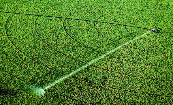 Desarrollo de sistemas de irrigación-01