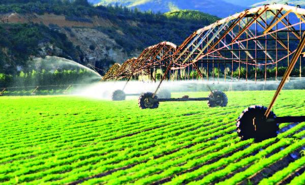 Irrigación mejorada-01